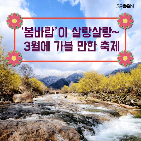 [카드뉴스] 봄바람이 살랑~ 3월에 가볼 만한 축제는?